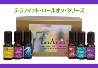 terranoint-category-topbanner390